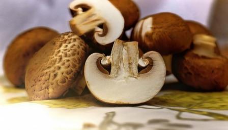 brown mushrooms-1167181_640