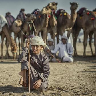 Camels-4468350_640