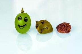 grape to raisin-420983_640