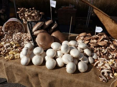 mushrooms farmers-market-2278597_640