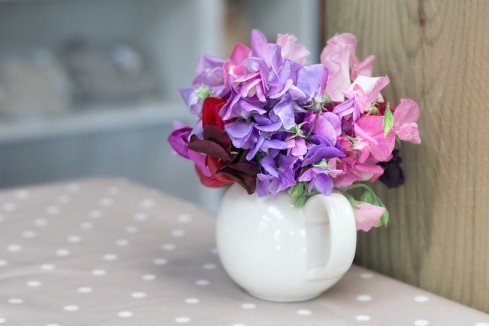 sweetpea in vase