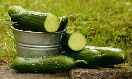 cucumbers-1588945_640